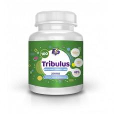 Tribulus 40% капс